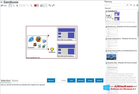 لقطة شاشة Sandboxie لنظام التشغيل Windows 8.1