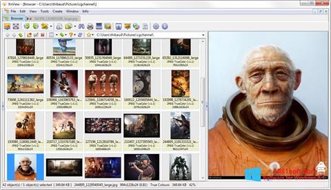 لقطة شاشة XnView لنظام التشغيل Windows 8.1