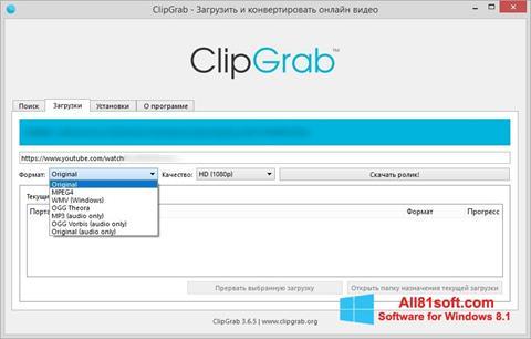 لقطة شاشة ClipGrab لنظام التشغيل Windows 8.1