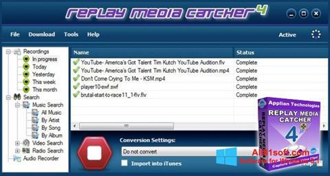 لقطة شاشة Replay Media Catcher لنظام التشغيل Windows 8.1