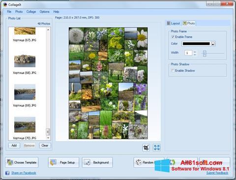 لقطة شاشة CollageIt لنظام التشغيل Windows 8.1