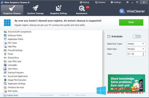 لقطة شاشة Wise Registry Cleaner لنظام التشغيل Windows 8.1