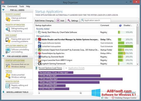 لقطة شاشة Reg Organizer لنظام التشغيل Windows 8.1