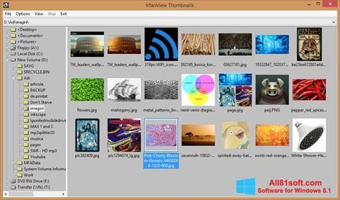 لقطة شاشة IrfanView لنظام التشغيل Windows 8.1