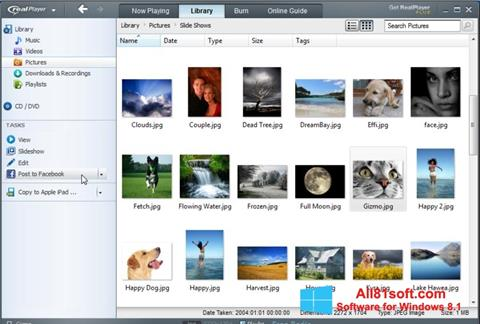 لقطة شاشة RealPlayer لنظام التشغيل Windows 8.1